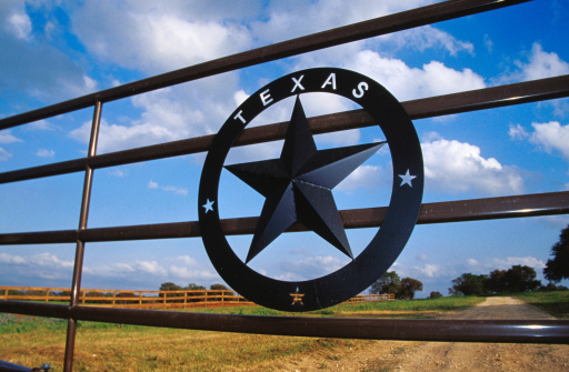 Texas Ranks 2nd for New Residents