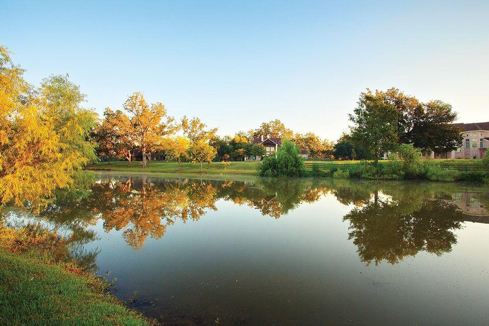 Big Benefits of a Bigger Backyard